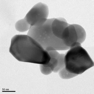 TEM 1 nanoparticelle idrossiapatite